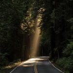 Természetes fény