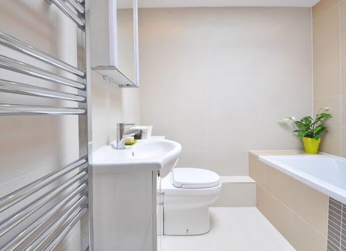 Fürdőszoba növény